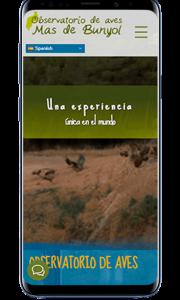 Paginas Online Web Negocios Contratar Aragon Zaragoza España Mejor Precio Baratas Tienda Responsive Smartphone